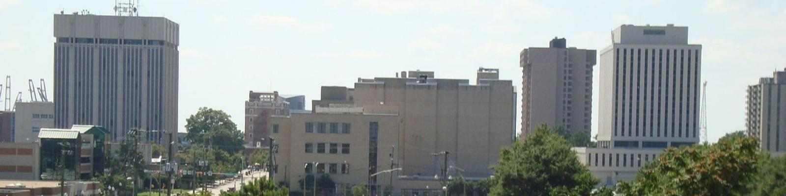 View of the Downtown Newport News Skyline Cover