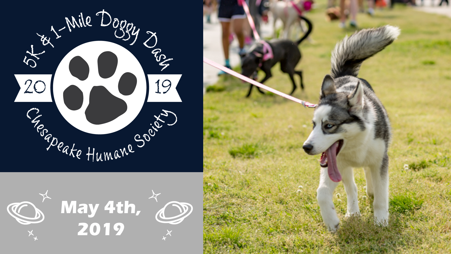 5K Doggy Dash to benefit Chesapeake Humane Society