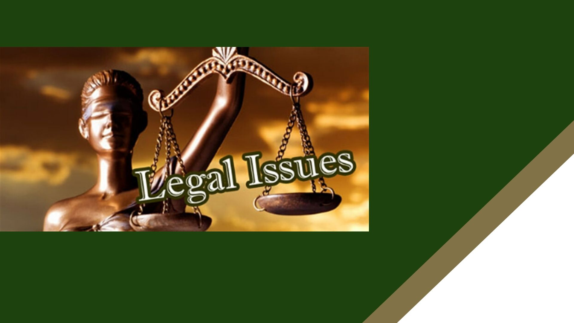 Legal Issues Workshop