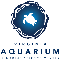 The Virginia Aquarium & Marine Science Center Earns The Certificate of Excellence