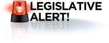 Legislative Alert: Oppose Governor's Substitutes on Group Health Plans