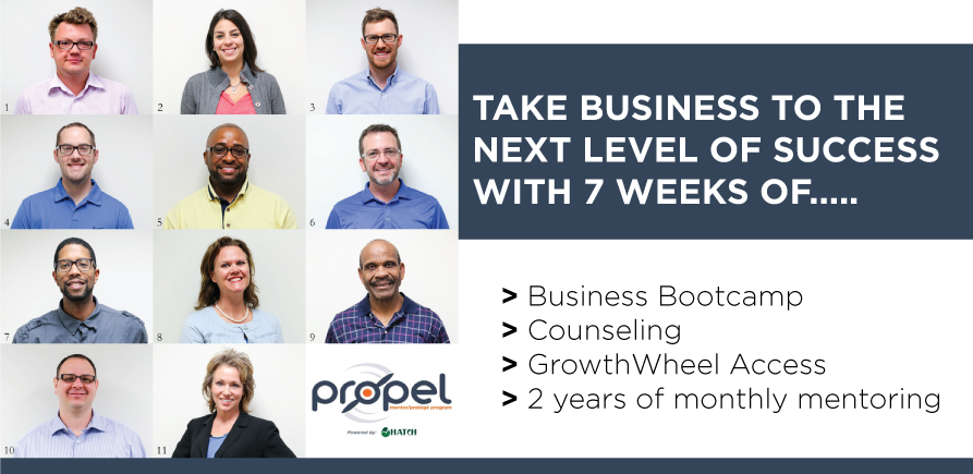 PROPEL, Mentor-Protege Program
