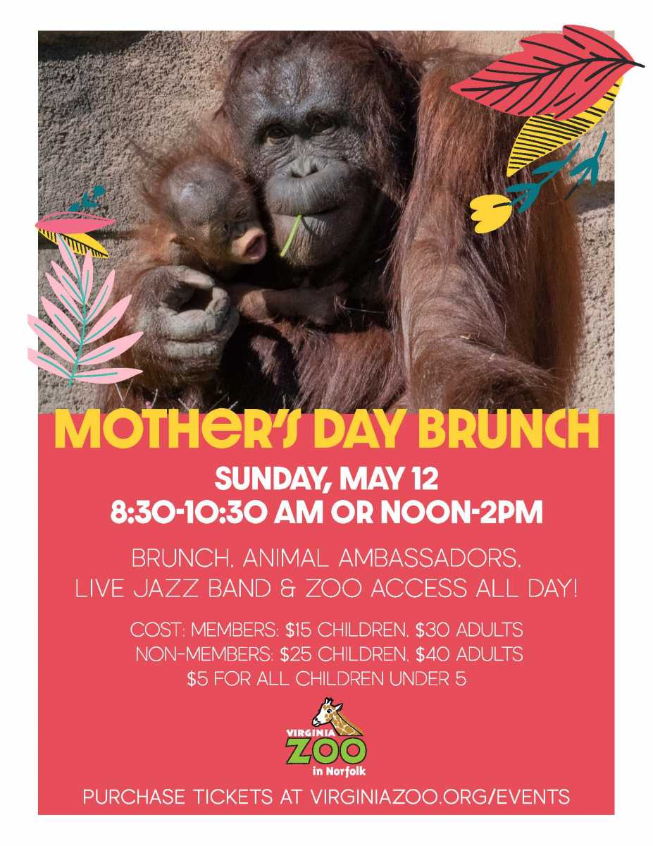 Mother's Day Brunch at the V.A Zoo